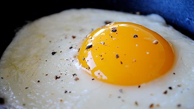 Egg Protein
